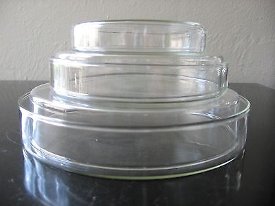 A Set Of Four Glass Tissue Culture Plate Petri Dish Lab Biology New