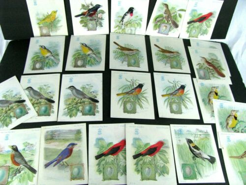 Singer Sewing Machine Song Birds Series Lot of 24 Victorian Trade Cards - 1920s
