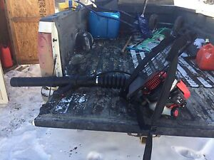 SOLD troy leaf and snow blower