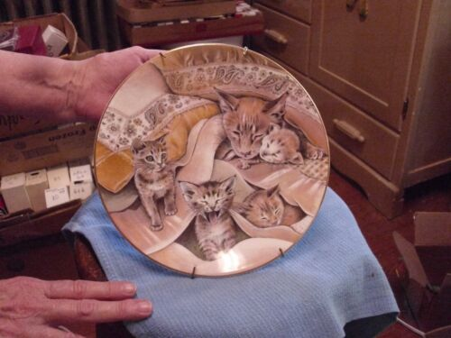 """Royal Worcester Crown Ware England """"Cats & Kittens"""" Pam Cooper 1987 EXCELLENT!"""