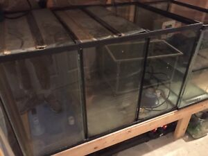 11 Aquariums and Misc Accessories