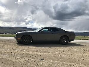 2017 Muscle Car