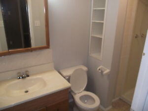 For Rent: 1 Bedroom Lower Suite (1305 30 Street S)