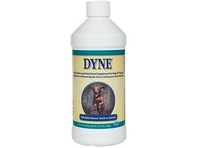 Dyne High Calorie Syrup  16oz Dietary Supplement for Dog calf Pig horse Goat