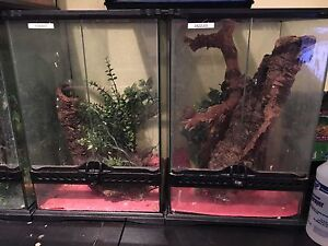 "FS: 3 - 12x12x18"" Exoterra reptile cages"