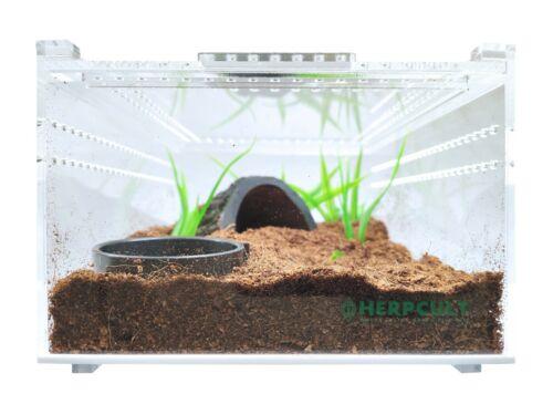 Herpcult Acrylic Reptile Terrarium Gecko Lizard Snake Spider Vivarium Cage Tank