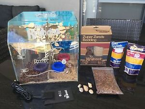 2 hermit crabs and home and accessories Scarborough Stirling Area Preview