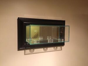 Glass display cases $35 for single puck/ball