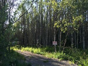 5ACRES, ONLY $36,900 OWNER WILL FINANCE