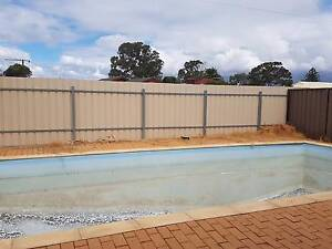 Swimming pool for urgent sale!!!!!! Parafield Gardens Salisbury Area Preview