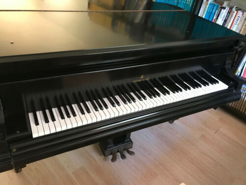 Steinway & Sons grand piano  6