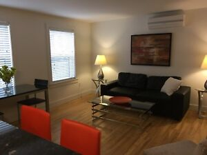 Downtown/1bedrm flat/furnished/parking/all inclusive rent