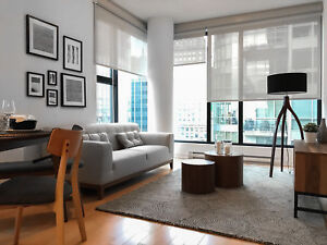 4 1/2  Condo  in Old Port Downtown Montreal  -   Walk Score 99