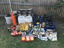 Home brew kegerator and kegs for sale Carcoar Blayney Area Preview