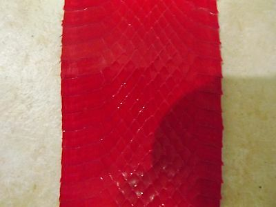 Full Size Red Whip Snake Python Snake Skin Hide Costume Leather Crafts Boy Scout