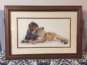 Lions picture