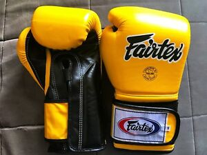 Brand NEW 14oz Fairtex BGV9