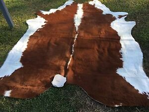Beautiful gorgeous cow hides rugs skin floor mats Newcastle East Newcastle Area Preview