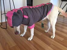 Fuzzyard dog coat Mount Duneed Surf Coast Preview