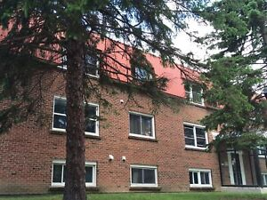 Carpet free bachelor in great west end location-306-801 Castell