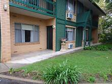 LOCATION, LOCATION - 2 BR HOME NEAR THE HEART OF NORTH ADELAIDE & Greenwith Tea Tree Gully Area Preview