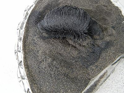 SPECIAL 10 Lbs. Genuine Black Magnetic Sand Pacific Ocean Beach