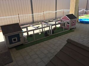Rabbit/bunny  hutches with run Whitby Serpentine Area Preview