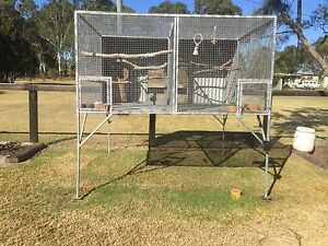 Suspended aviary Riverstone Blacktown Area Preview