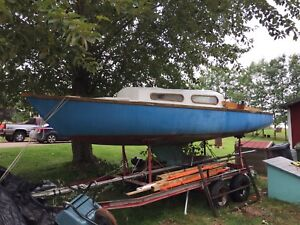 Project boat for sale! Shark 24'