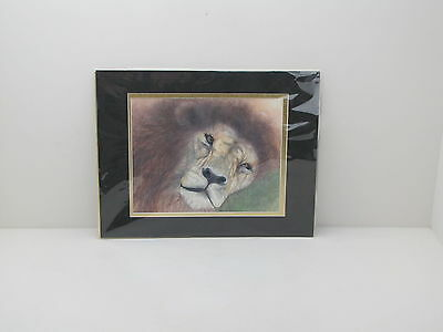 Lion In Wait Laser Print 2004 Matted   Sealed Marcia Kayes Florida Artist Bio
