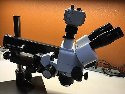 Xts Trinocular Stereo Zoom Microscope On Flexible Arm Stand Mintron Dsp Camera