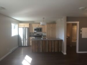 Two bedroom 1000 sq ft apartment in Caronport