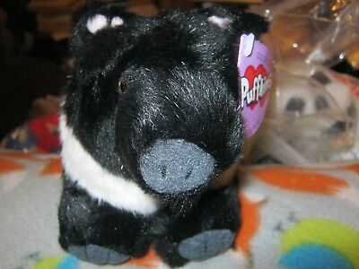 SOUIE THE HAMPSHIRE PIG PLUSH PUFFKINS NWT