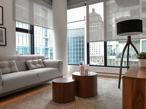 Brand New 2 bedroom Condo  Apartment in Financial District