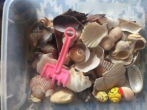 Crazy crab/aquarium products Mount Hawthorn Vincent Area Preview