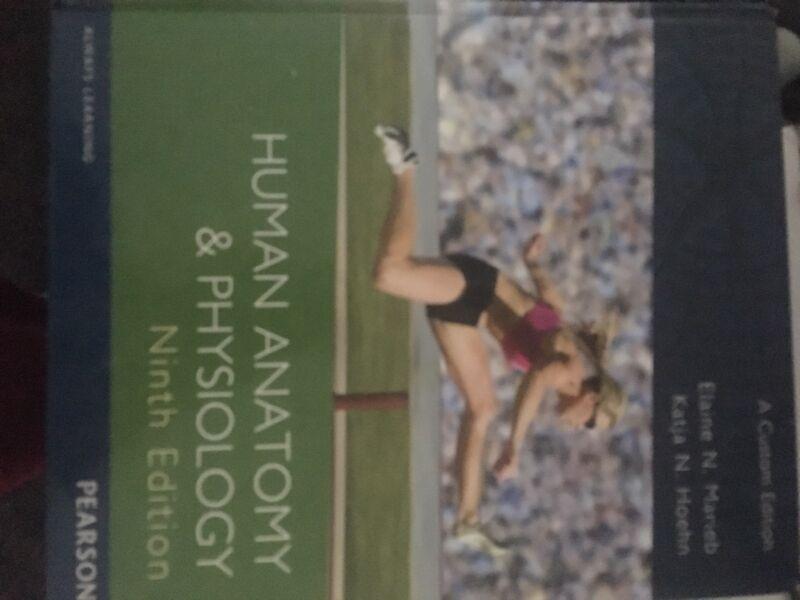 Human Anatomy Physiology Marieb 9th Edn Textbooks Gumtree