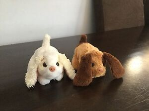 2 Fur Real Puppies Doubleview Stirling Area Preview