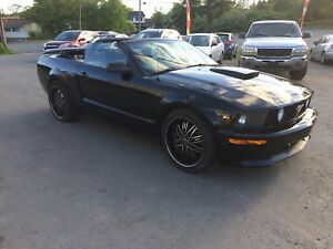 2008 Ford Mustang Convertible California Special GT, New MVI!