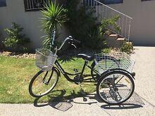 Bike Bicycle Black Adult Tricycle Basket RRP$599 Beaumaris Bayside Area Preview