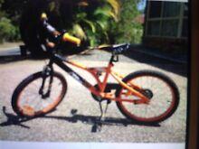 Boys 50cm bike Forest Lake Brisbane South West Preview