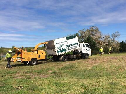 Business for Sale - Tree Lopping & Yard maintenance -Bowen Q 4805