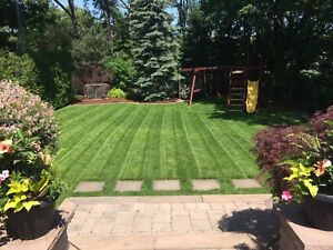Reliable and Affordable Lawn Care in Etobicoke