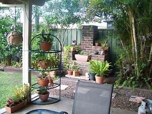 Room to rent Walkervale Bundaberg City Preview
