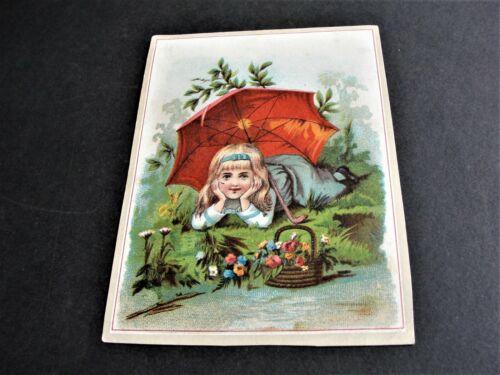 Victorian Ephemera 1800s Trade Card- Flower City Soap Co., Rochester, New York.