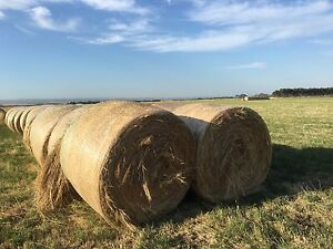HAY Quality rye oat and felerace rolls. Freshly cut nice tight Winchelsea Surf Coast Preview