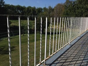 Wrought Iron Railing-37 ft on front side