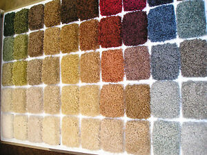 Wall To Wall Carpet Nylon Saxony Any Color Any Size I Can