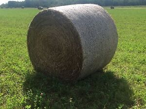 Horse Quality Hay for sale