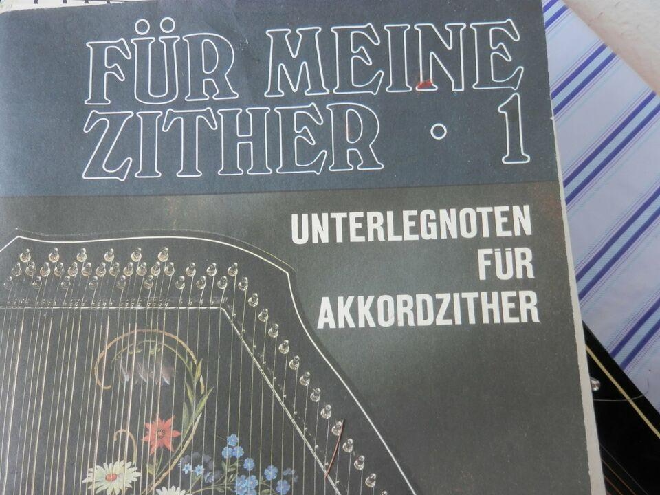 Zither mit Noten und Schlüssel in Dresden