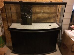 72 gallon bow front plus lights